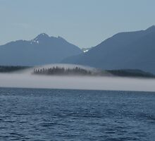island in the mist by dwbudgie