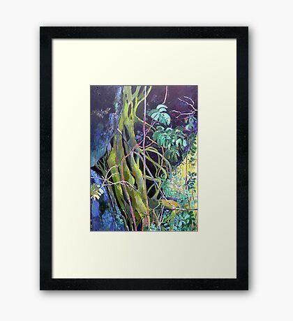 Fig Roots Framed Print