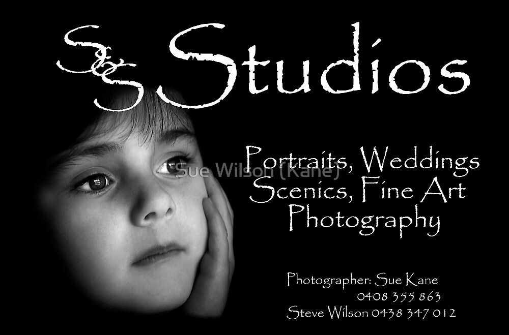 S&S Studios by Sue Wilson (Kane)