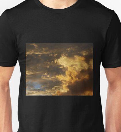 Brushed with gold Unisex T-Shirt
