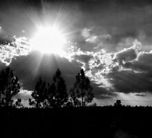 Sunshine On My Shoulder by Suni Pruett