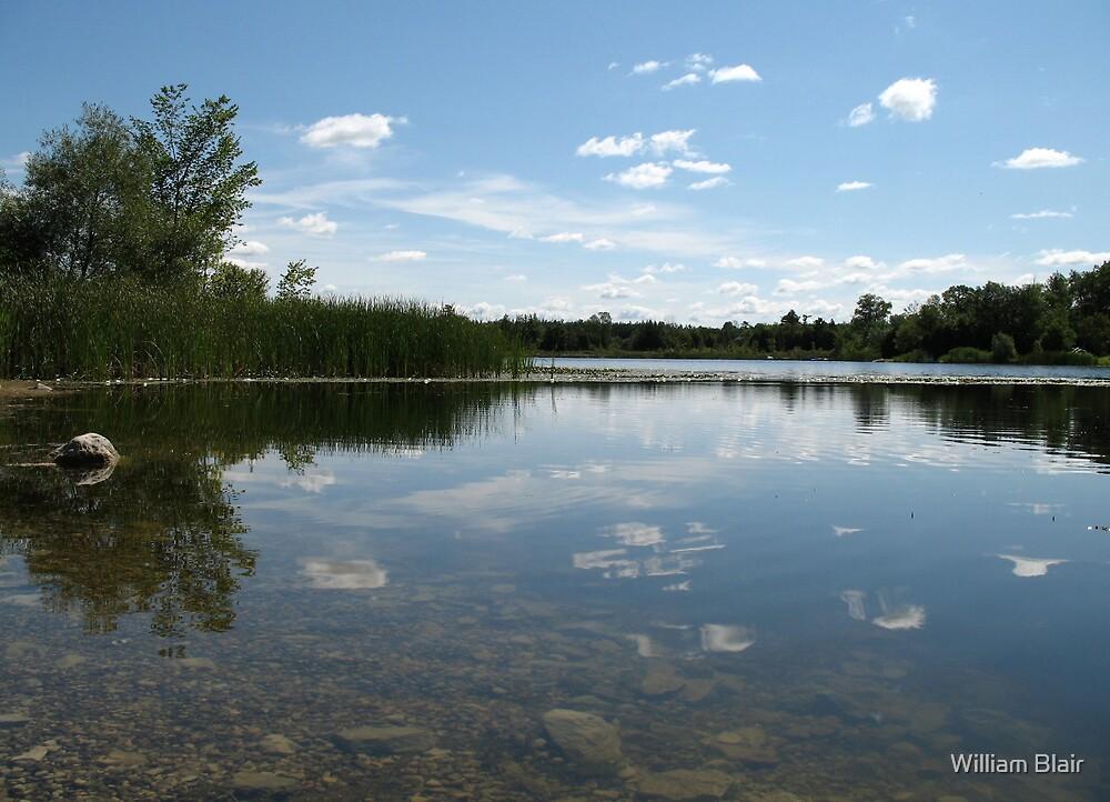 Pushlinch Lake by William Blair
