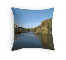 Speed River Throw Pillow