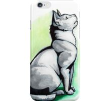 Ca(s)t Shadow iPhone Case/Skin