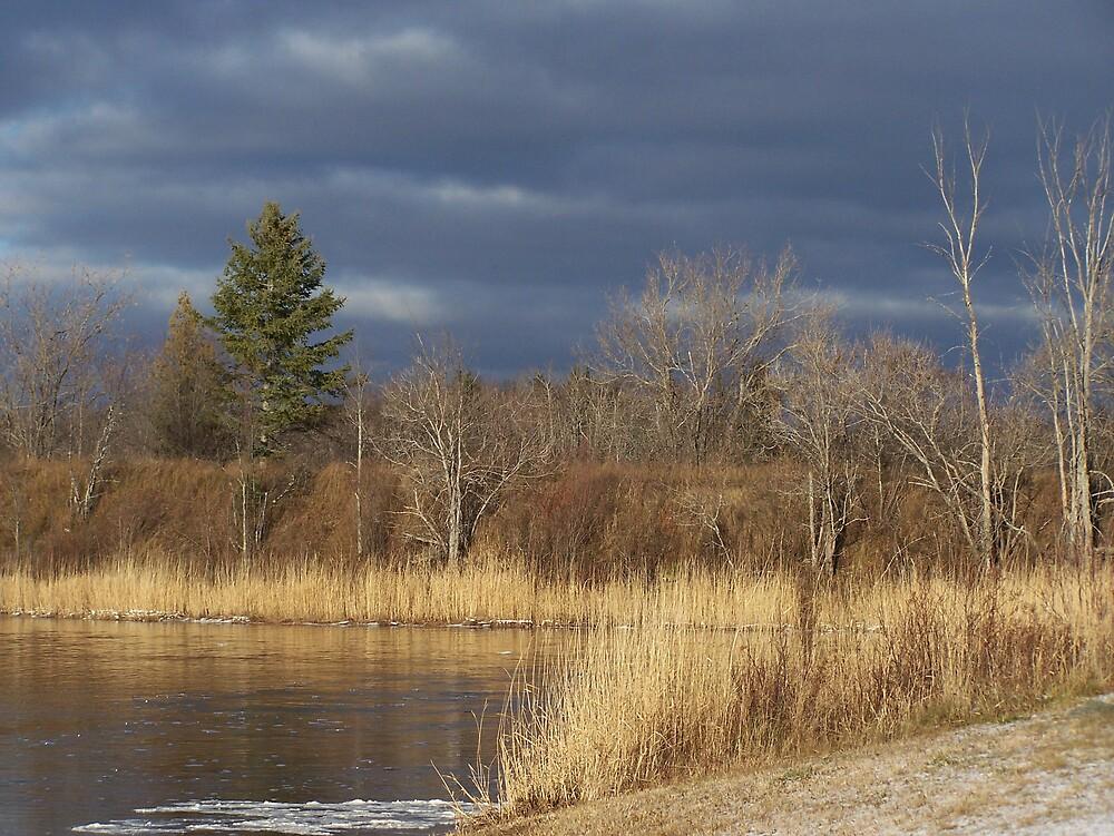 Winter Clouds by Gene Cyr
