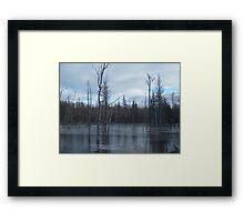 Freezing Swamp Framed Print