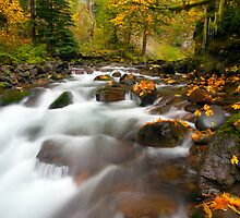 Autumn Passages by DawsonImages