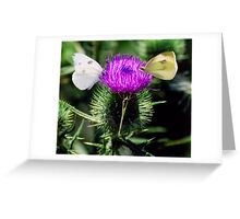 Pretty Propeller Greeting Card