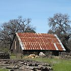 The Old Rusted Roof Barn On Oak Run Road........ by DonnaMoore