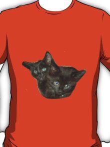 Two Kittens T-Shirt