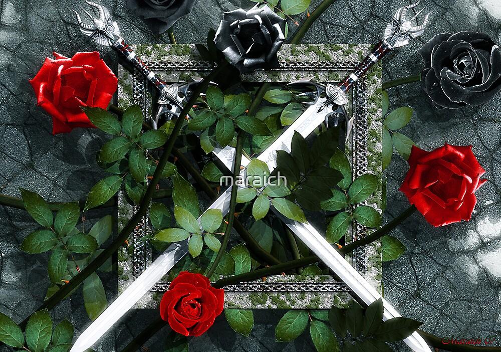 War of the Roses by maraich