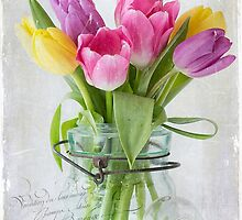 Tulips in a Jar by cresslerphotos