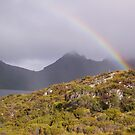 dreary day with burst of rainbow to brighten things a bit, on Cradle Mt by gaylene