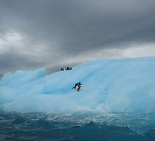 Storm brewing in Antarctica by Bettina Kaiser