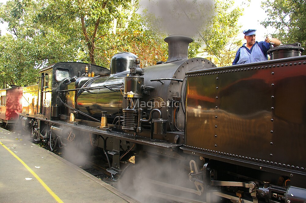Puffing Billy 1 by Magnetic