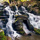 The Cascades, Virginia Water by Stephen Liptrot