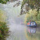 The Basingstoke Canal by Stephen Liptrot