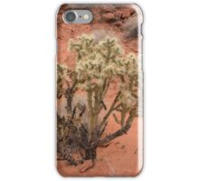 Valley of Fire Cactus iPhone Case/Skin