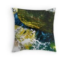 In Shadow There Is Life Throw Pillow