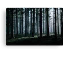 Mystery forest Canvas Print