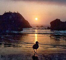 Cannon Beach, Oregon, USA  1989 by lynn carter