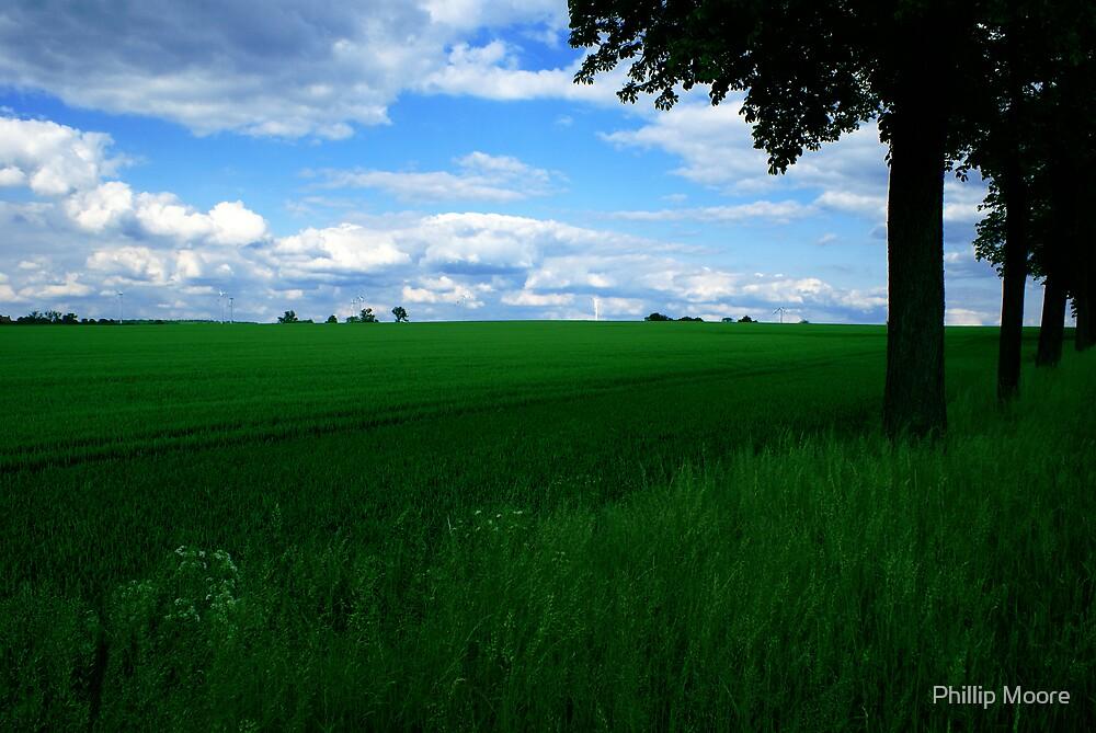 Field & Sky by Phillip Moore