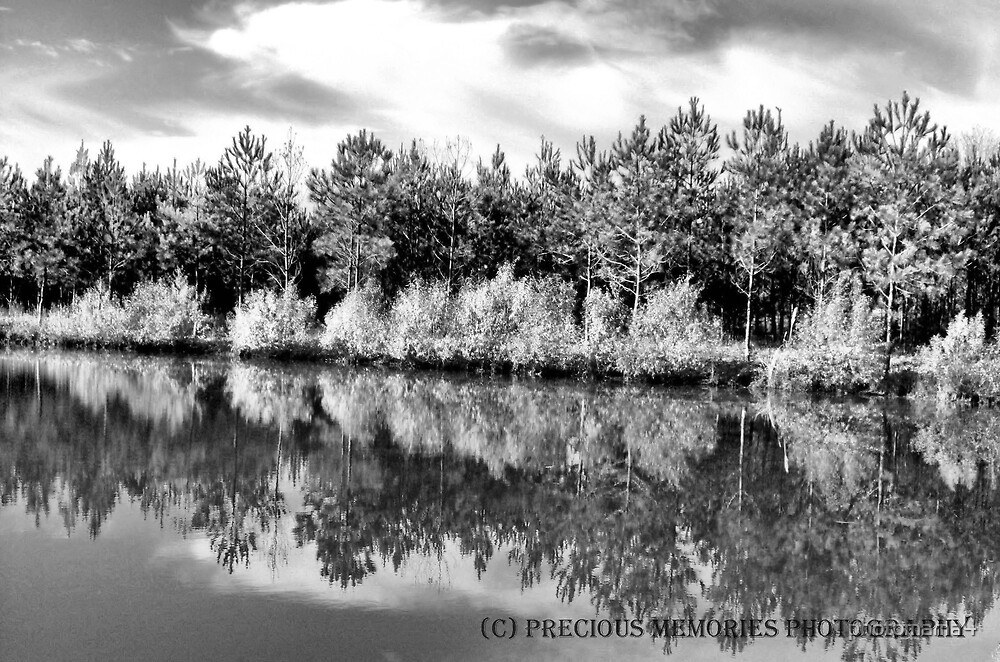 Mirror Image B&W by photomama4