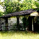 Louisiana Shotgun House by Patito49