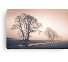 Tywi valley Trees 1 Canvas Print