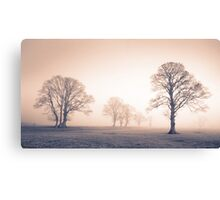 Tywi Valley Trees 2 Canvas Print