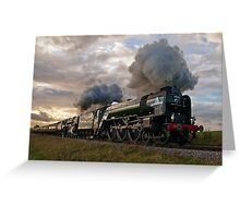 60163 Tornado & 70000 Britannia Greeting Card