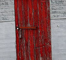 Red Door by Lisa Phillips