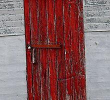 Red Door by Lisa Phillips
