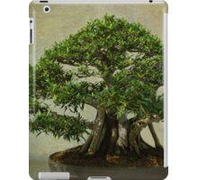 Grounded  iPad Case/Skin