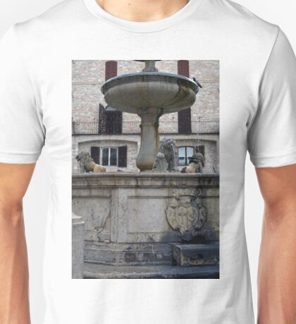 Public fountain and buildings in central square in Assisi, Italy Unisex T-Shirt