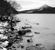 Loch Rannoch Shoreline by Tim Haynes
