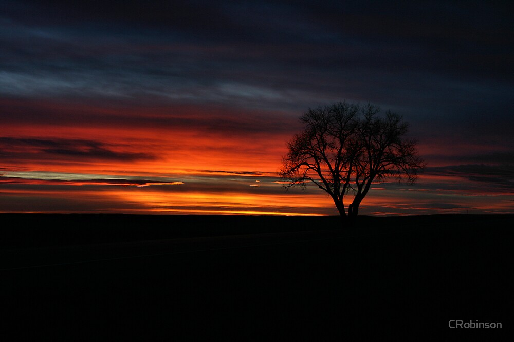 Prairie Sunset by CRobinson