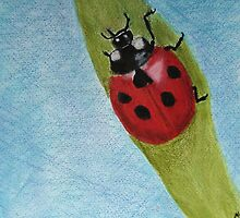 Ladybug on a leaf by Linda Ursin