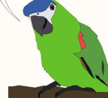 The HDR Parrot Sticker