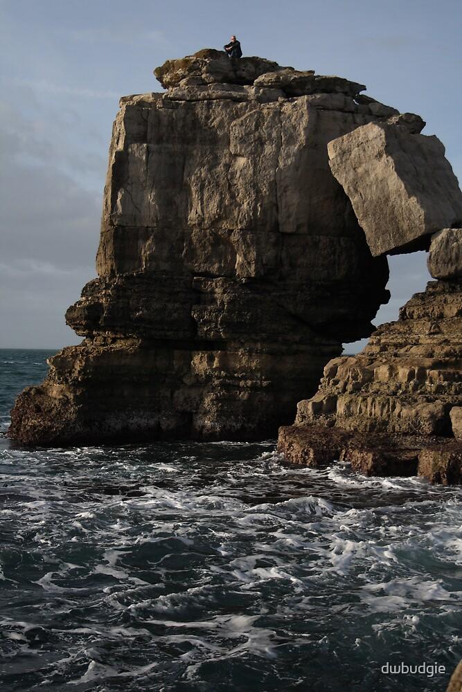 portland by dwbudgie