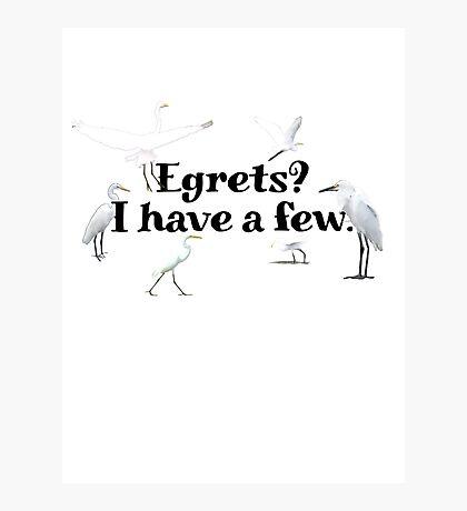 Egrets? I have a few Photographic Print