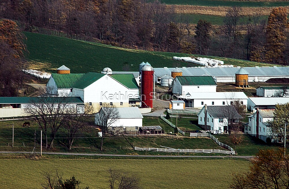 Another View Of A Farm by Kathleen Struckle