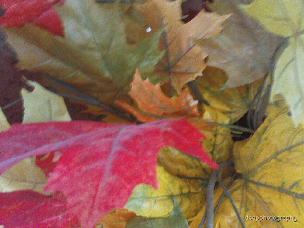 Autum Leaves by deepphotography