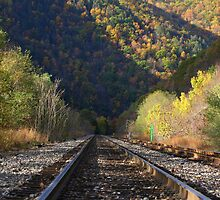 Fall...ow the tracks by martinilogic