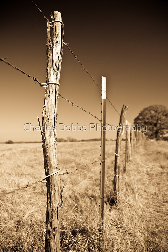 Borders by Charles Dobbs Photography