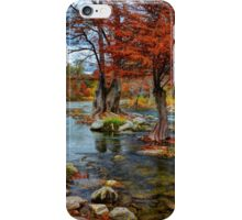 Guadalupe In The Fall iPhone Case/Skin