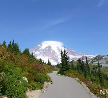 Mt. Rainier from Paradise by Penny Ward Marcus