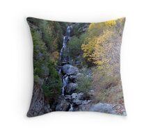 Newhalem Waterfall Throw Pillow