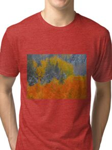 Mix of two seasons Tri-blend T-Shirt