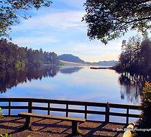 Cleawox Lake Florence Oregon by Don Siebel
